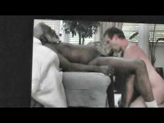 SUCKING BLACK GRANDPA HORSE DICK